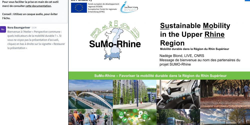 Erster partizipativer Workshop SuMo-Rhine findet online statt